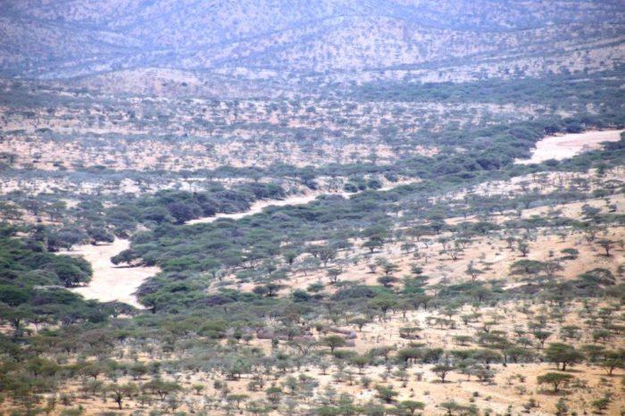 Droogte in Noord Kenia