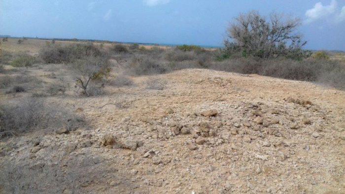 Resten van graven van piraten op Mouchas eiland
