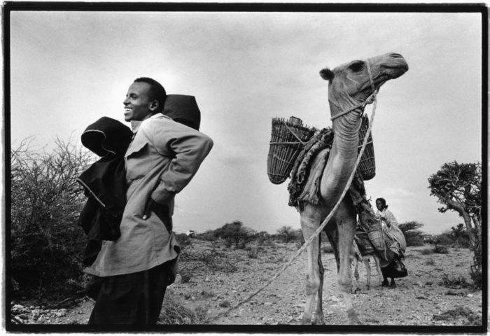 Somaliland, Omgeving Qoaryabley