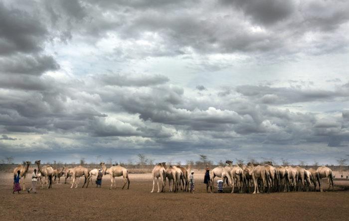 Kenya, Wajir,